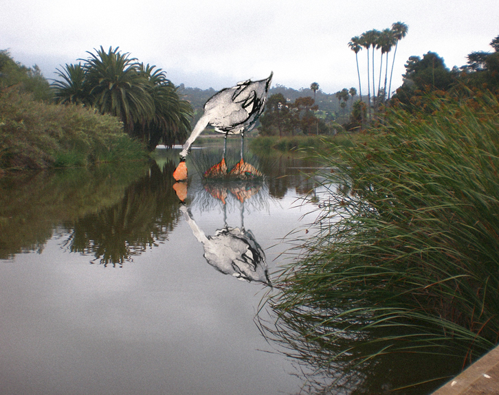 "Marlise Senzamici | ""Mesmerized at Andre Clark Bird Refuge, Santa Barbara"" | Photo montage | 11 x 14 in."